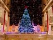 Macy's Christmas Tree