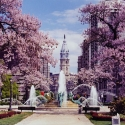 Swann Fountain in Spring Poster